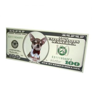 מסגרת שטר דולר