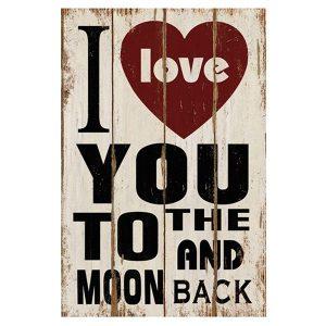 לירח ובחזרה