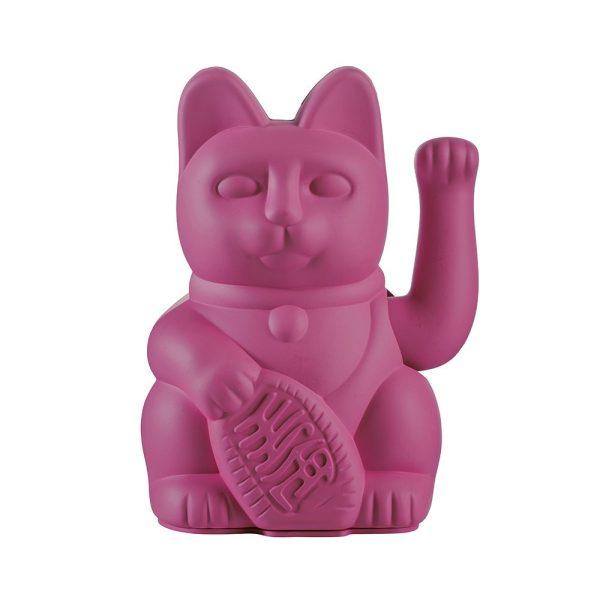חתול מזל פוקסיה