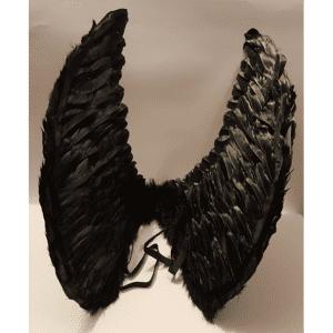 כנפיים - בגדי גוף