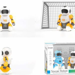 רובוטים עם מגרש