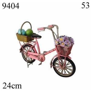 מושל אופניים ורודים